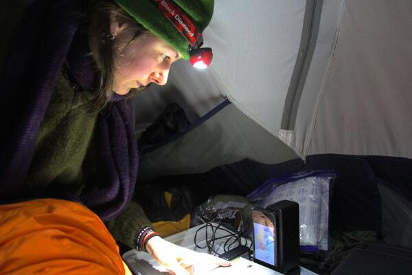 Tracie Seimon, Molecular Scientist at Wildlife Conservation Society, using Biomeme's PCR thermocycler out in the field. She is leading our collaboration to study CDV in Amur tigers.
