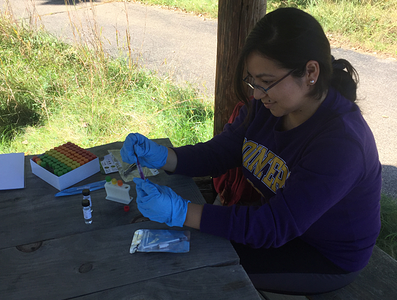 Student working with Biomeme sample extraction kit with Dr. Amy Prunuske.